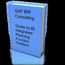 Integrated Planning Guide SAP BI IP