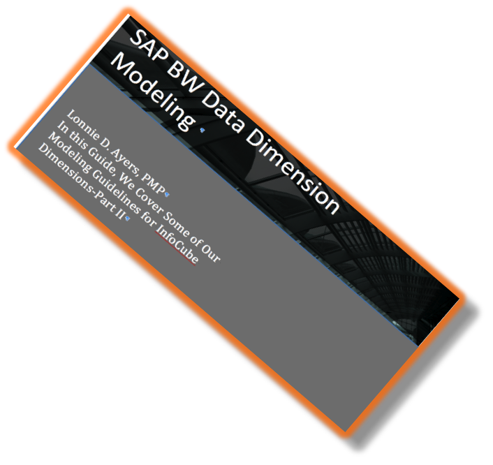 InfoCube Dimensional Modeling Guideline