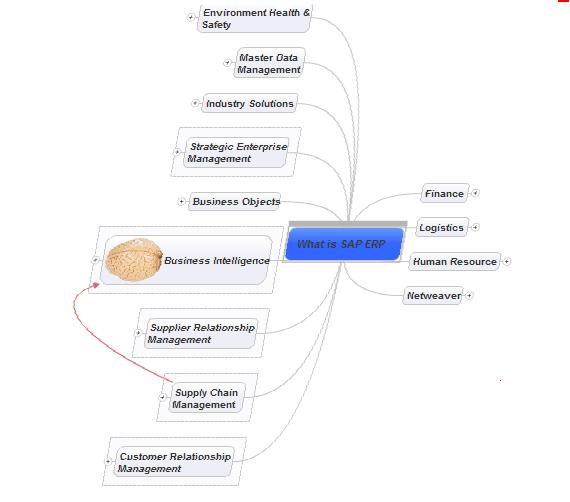 SAP Modules
