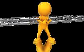 SAP Project Manger