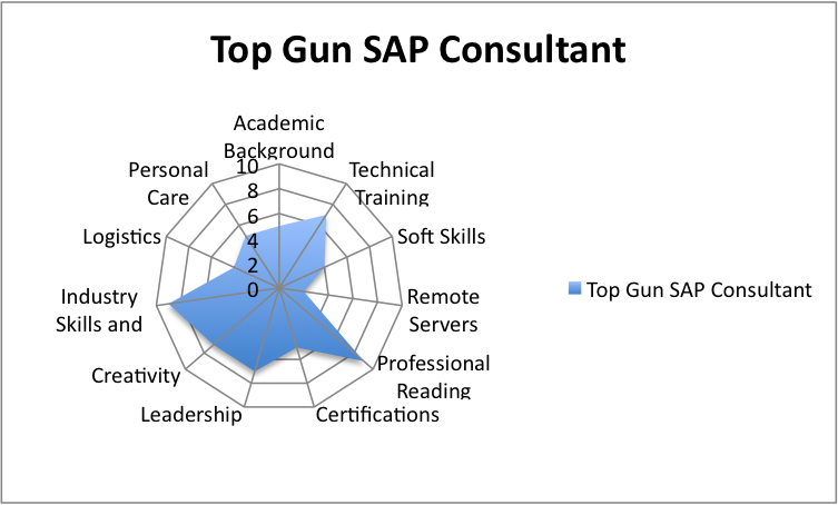 business plan sap consulting