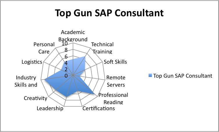 Top Gun SAP Consultant