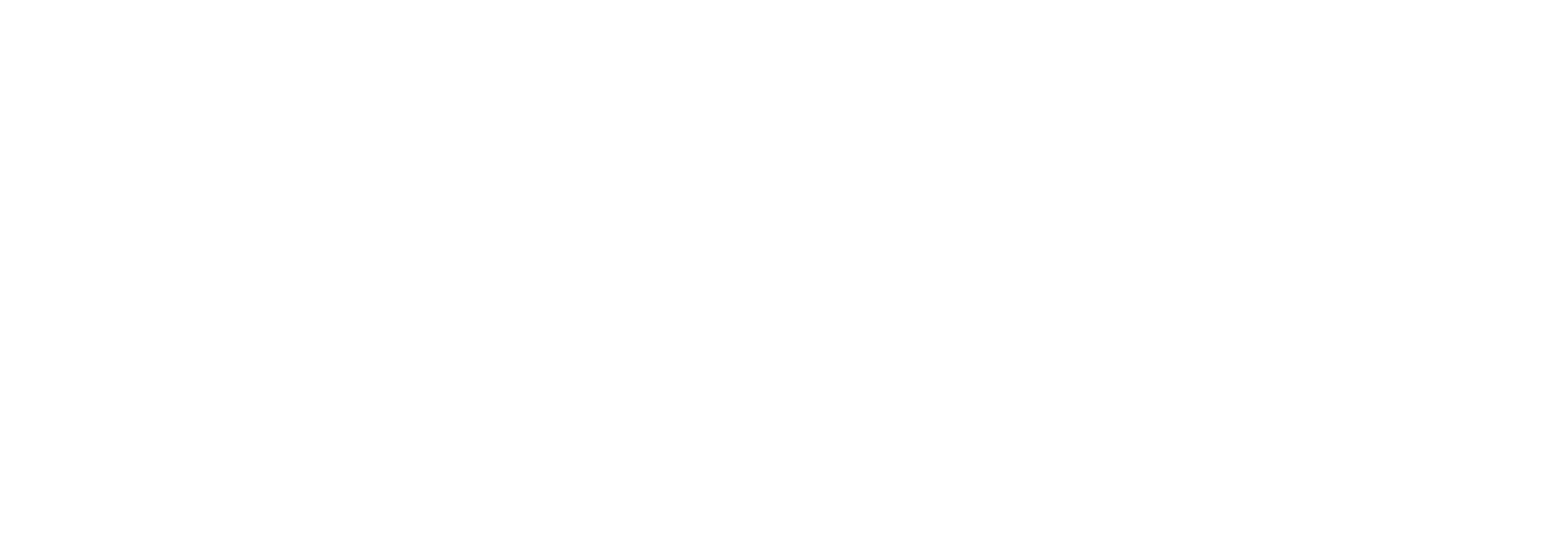 sapbw-consulting